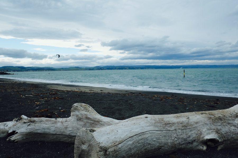 Kite Neuseeland