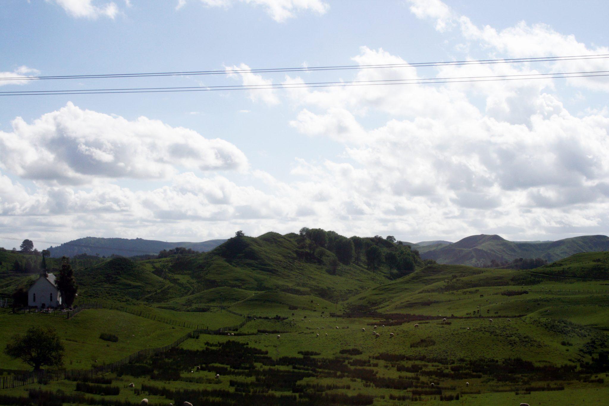 Landscape Taupo-River Valley3