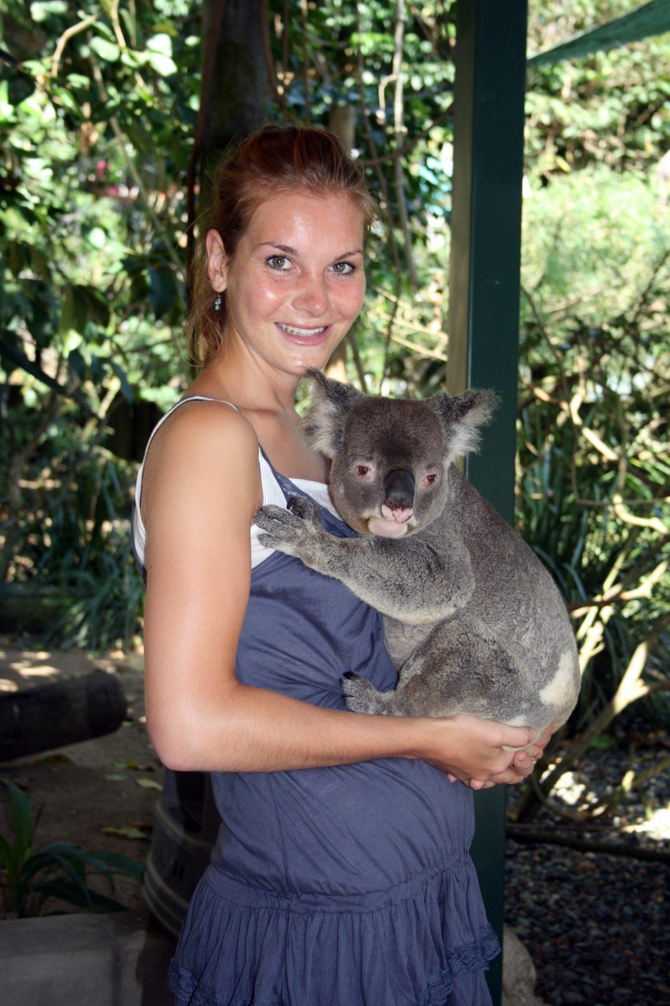 Lena Koala 4