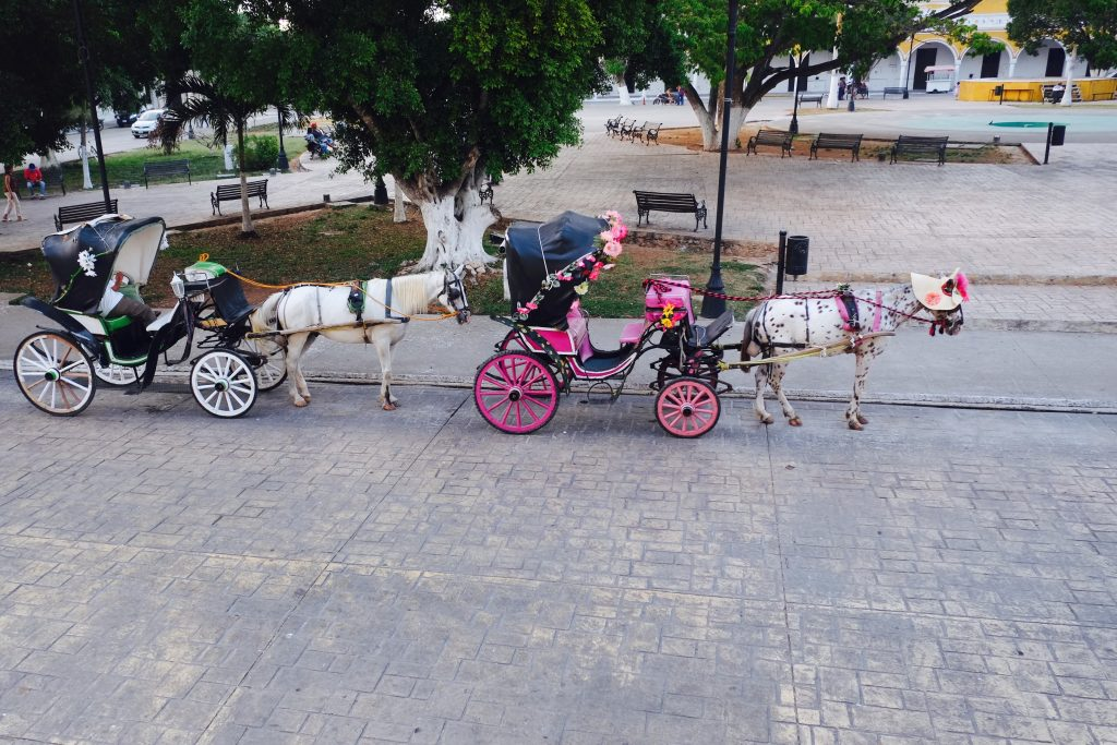 Pferdekutschen Izamal