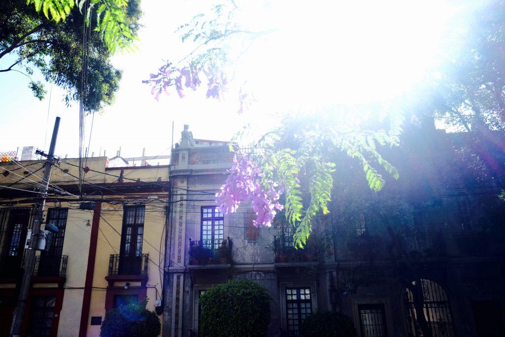 Mexico City Condesa
