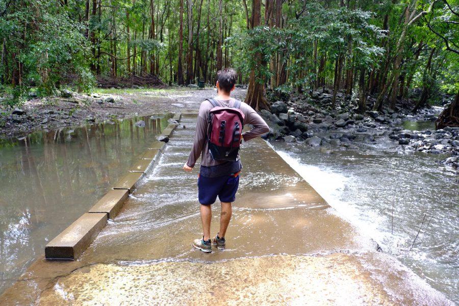 Wandern Black River National Park