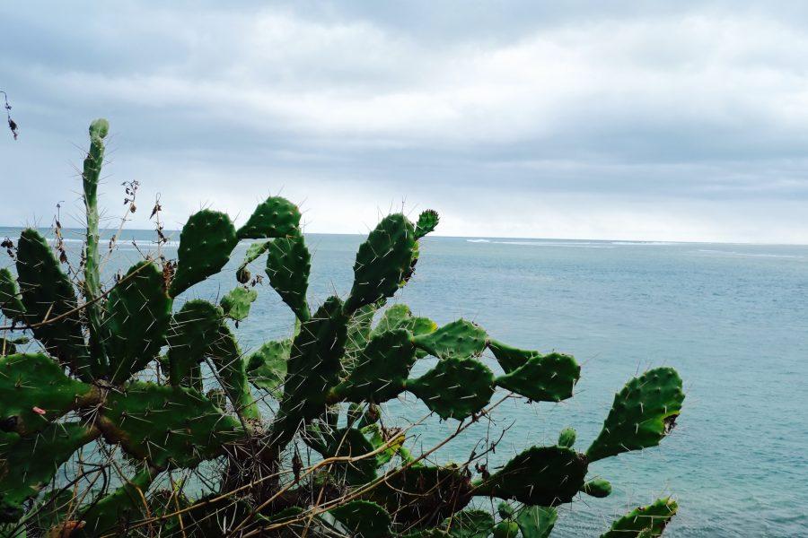 Meer Mauritius