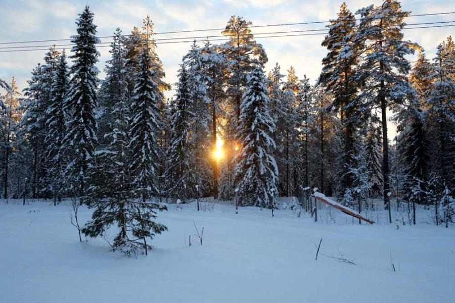 Lappland im Winter Reise