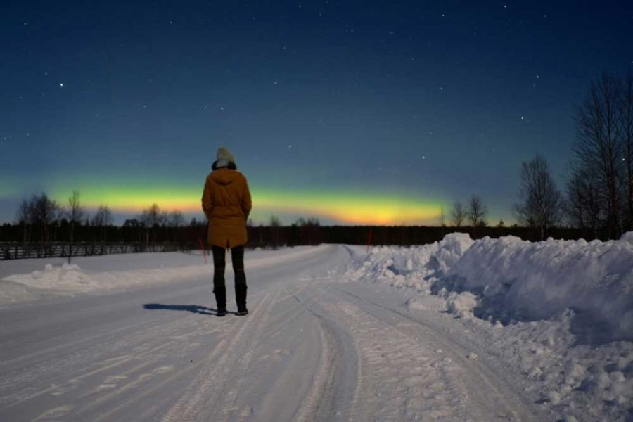 Nordlichter Lappland im Winter