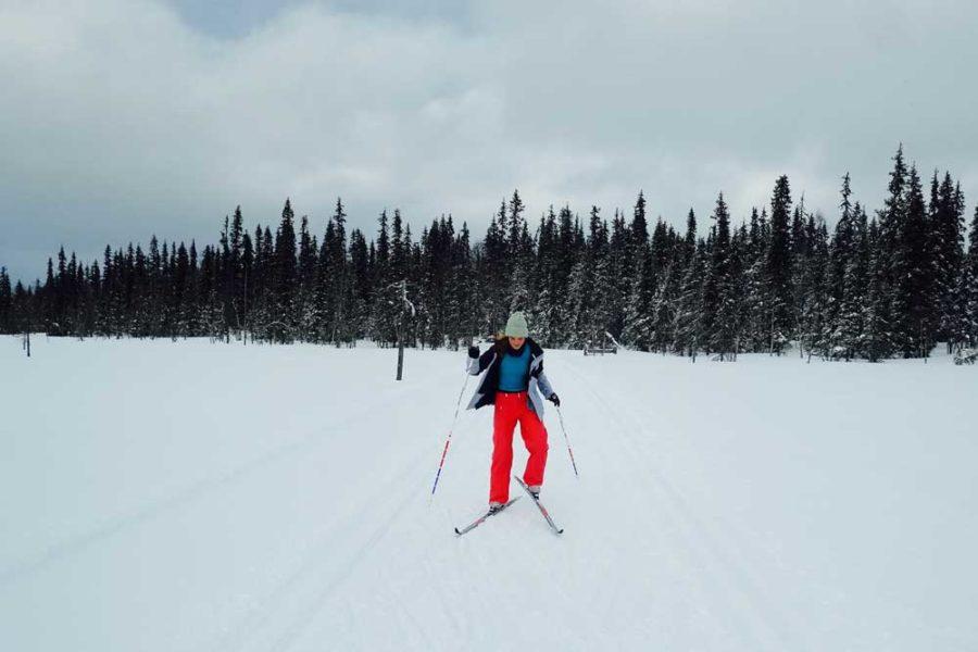 Langlauf Lappland beste Gebiete