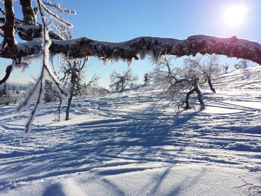 Skifahren Lappland Finnland Skigebiet