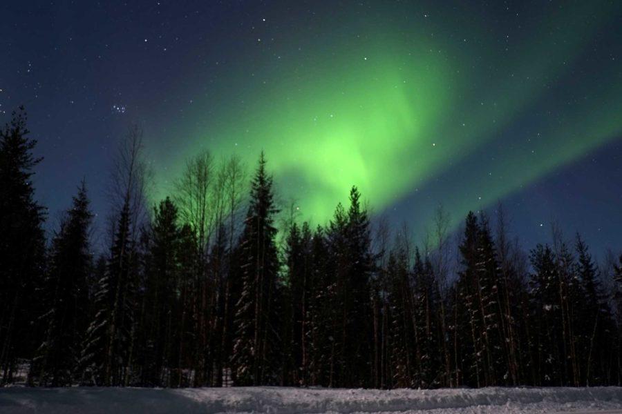 Tipps fuer die Nordlichter Jagd