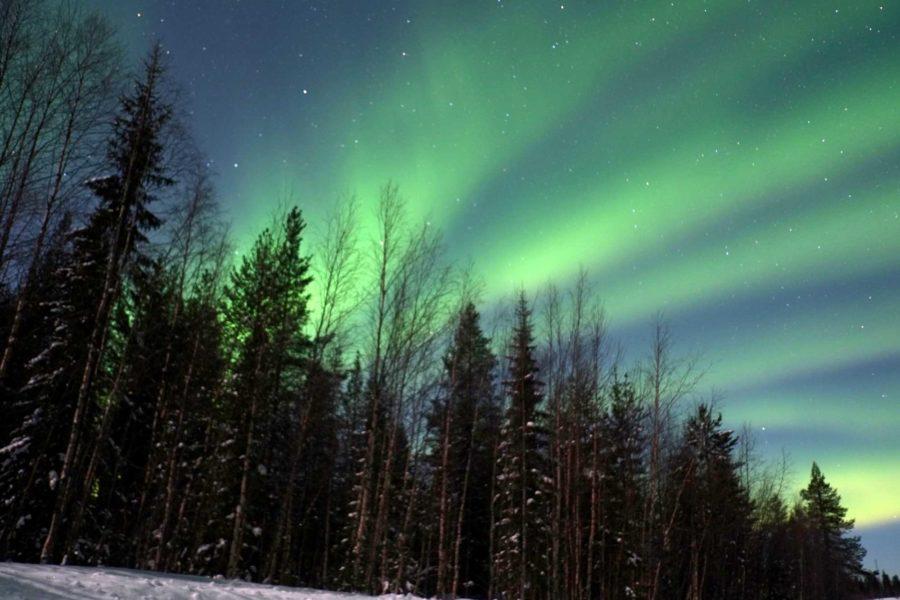 Nordlichter Jagd Finnland Lappland